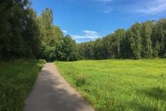 lutherweg-wegebelag